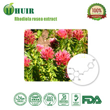 High quality Rhodiola Rosea Extract with best price/Salidroside 3%