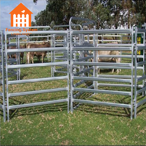 oval rail cheap cattle panels show ring fence