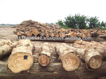 roud teak wood/timber from Africa