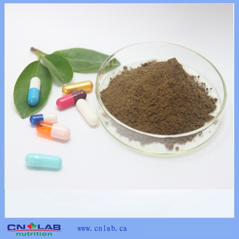 Hot sales Neem extract/Azadirachtin A 5%-99%/Cure fever factory supply