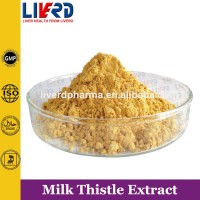 Low Price Hot Sale 80% Silymarin /Milk Thistle Extract
