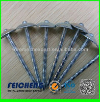 supply anping factory products high quality roofing nail