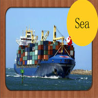 cheap logistics company freight forwarding and shipping lines to Oslo/Sola Europe from xiamen/fuzhou,china--Lincoln