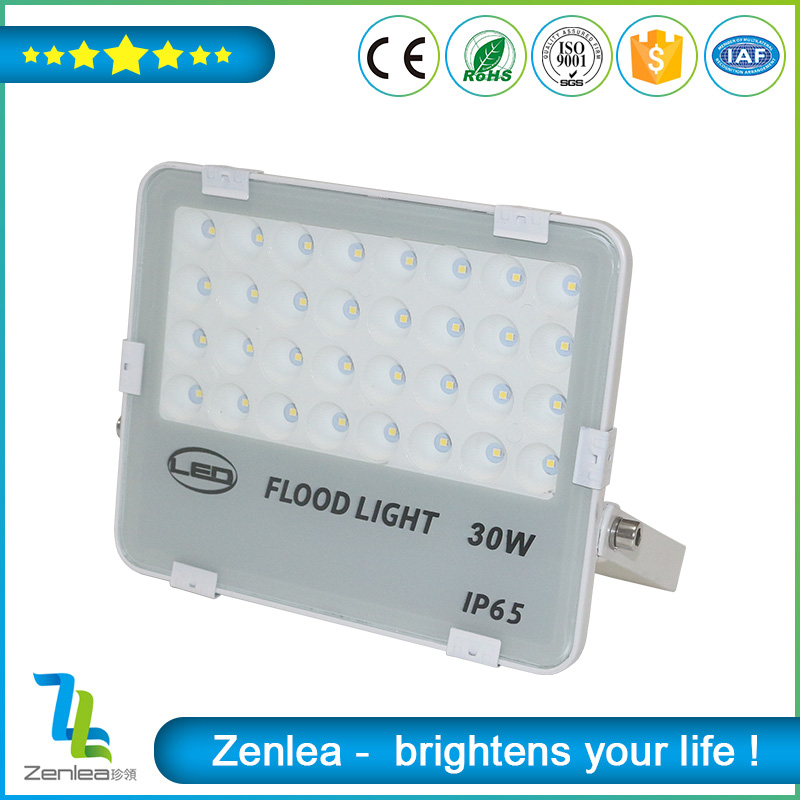 CE ROHS Waterproof outdoor SMD2835 IP65 30W led flood light