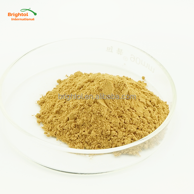 GMP Standard Black Cohosh Extract Triterpenes 2.5% CAS No.1254019-22-1