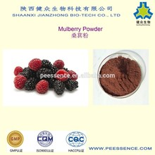 GMP factory supply 100% natural organic mulberry powder/mulberry fruit juice powder