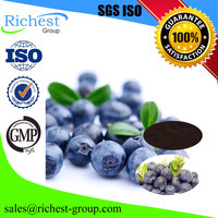 factory offer bilberry fruit extract 25% 50% Anthocyandins