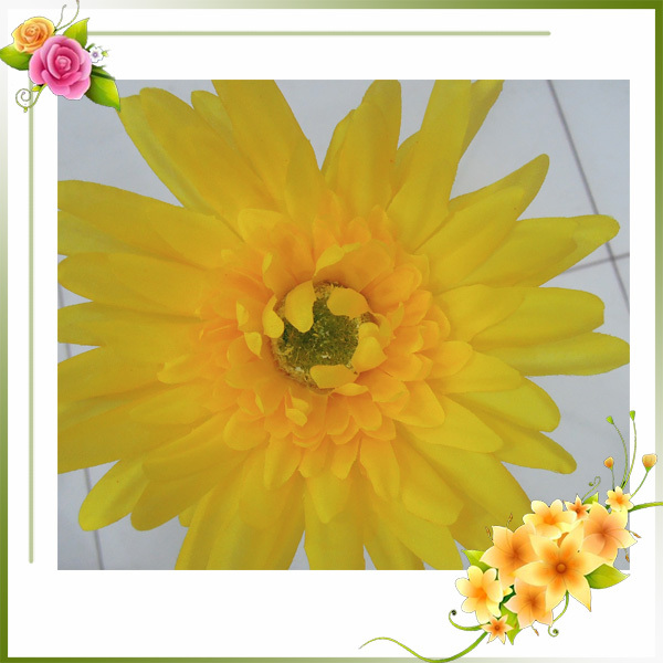yellow gerbera factory wholesale