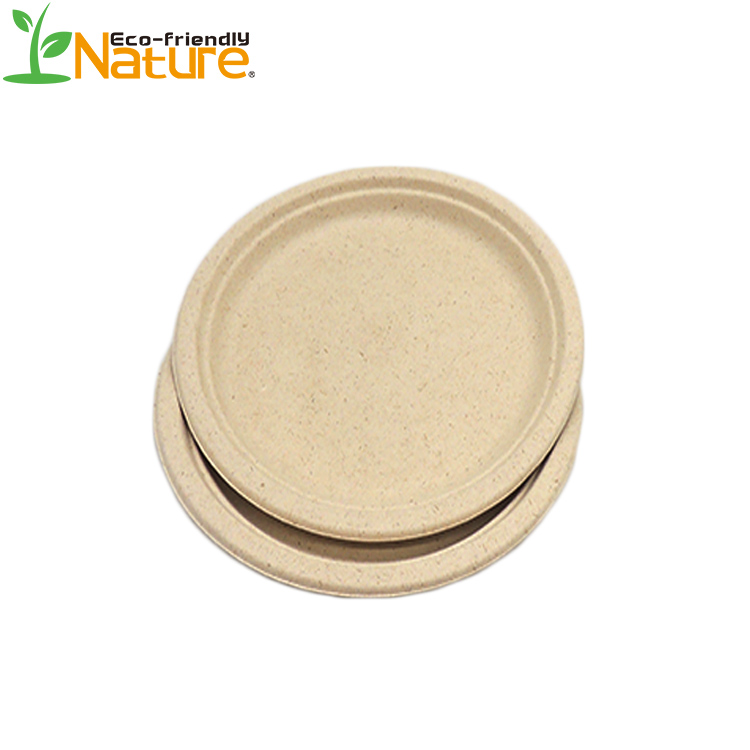 Attractive Pure Nature 10' Disposable Sugarcane Bagasse Round <strong>Plate</strong>