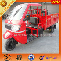 3 wheel with canopy tricycle