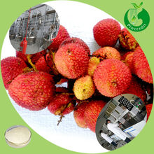 Hot Selling 100% Natural Litchi Extract Lychee Seed Extract