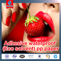 High Quality Adhesive Waterproof PP Paper