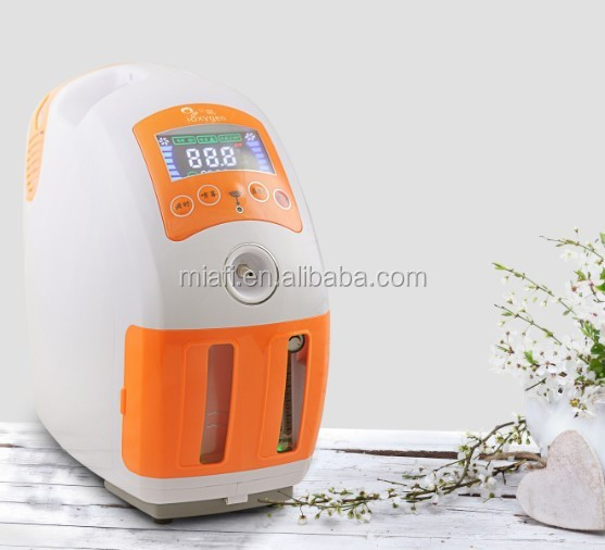 9L home use low price mini battery portable medical electric oxygen concentrator