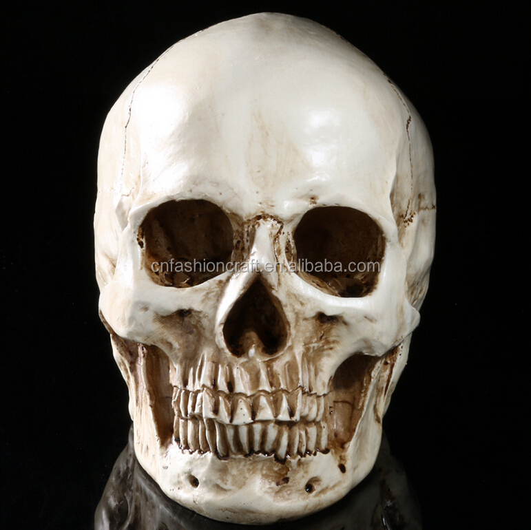 Custom made skulls decorative resin wholesales halloween skull for crafts