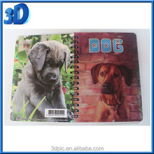 wholesale A6 PET/ PP cover 3d notebook with spiral wire, lenticular cover notebook