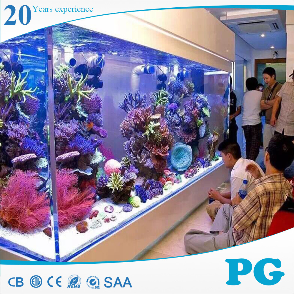 PG Made In Shanghai Custom Fish Tank Acrylic Kreisel Aquarium