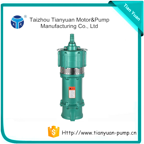 QDY Water Pump Oil Filled Electric Motor