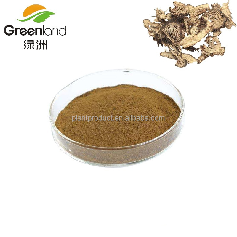 Pure Natural Black Cohosh Extract Powder with Triterpenoid saponins