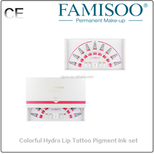Professional Tattoo Ink Kit for Lip Permanent Makeup on Sale