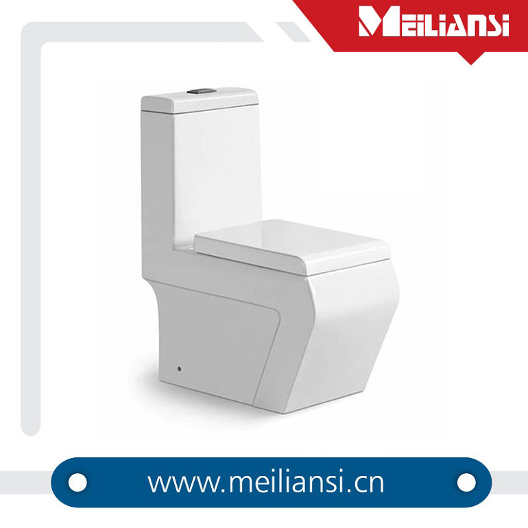 Elongated dual flush two piece P and S trap bathroom wc car toilet
