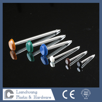 stainless steel plastic cap nails