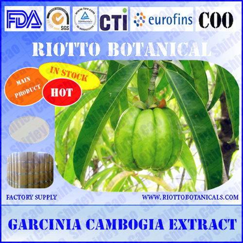 GMP standard factory supply slimming 100% natural garcinia cambogia extract powder (CAS 6205-14-7)