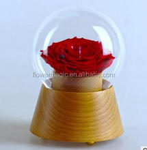 Eternal luxury rose preserved Decorative Flower one big red real rose in round glass wood bottom with bluetooth music DIY Gift