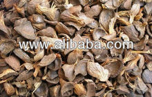 Palm Kernel Shell (PKS)