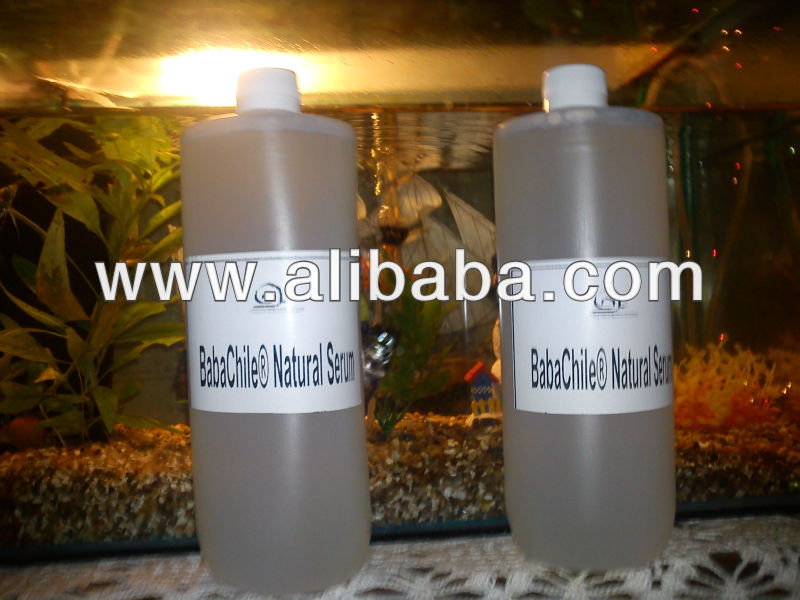 Babachile Snail Secretion Serum