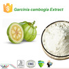 GMP factory supply 100% natural garcinia cambogia extract,HCA 60%, Hydroxycitric Acid 60%