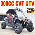 Hotsale 300cc Side by Side Gas Powered UTV
