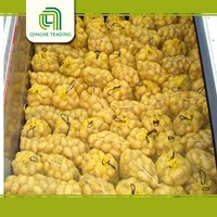 2015 new wholesale potatoes 10kg carton