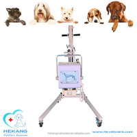 Imported x-ray tube high frequency portable mobile 4kw x-ray machine vet