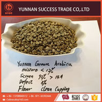 Cheap Hot Sale Quality Arabica Coffee