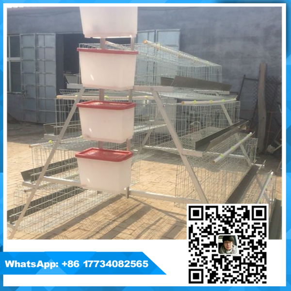 strong durable 96 / 120 bird cages breeding for chicken farm (whatsapp +86 17734082565)