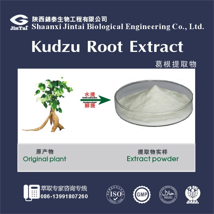 high quality puerarin & Isoflavone kudzu root extract powder