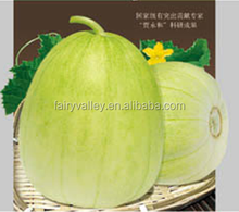 Hybrid sweet melon for growing-Fragrant honey