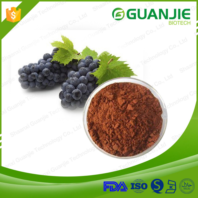 Natural Fruit Extract Grape Seed Extract for Sale