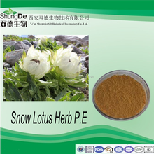 Factory supply lanatechead saussurea herb extract powder/Snowdrop P.E powder