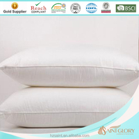Saint Glory - No.1 professional factory of down filled bedding products- home and hotel down and feather pillow