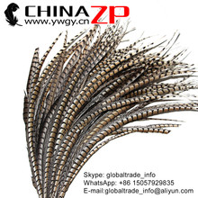 Golden Supplier ZPDECOR Bulk Sale Wonderful Quality Natural Raw DIY Long Lady Amherst Pheasant Tail Feather for Parties