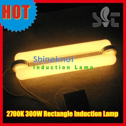 300W High Wattage 2700K Plant Grow Induction Lamp