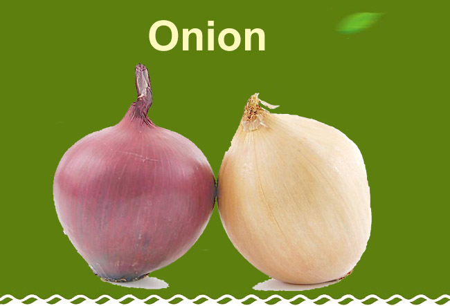 organic lowest natural price fresh organic red onion
