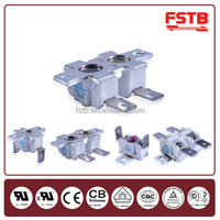 FSTB Snap Action Switches High Temperature