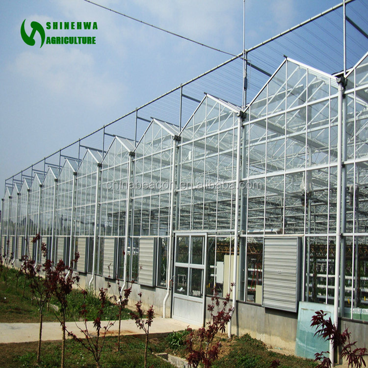 Prefabricated Greenhouse For Flower and Vegetable Growing