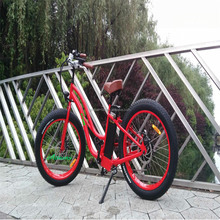 high efficiency singapore electric bicycle with cheap price