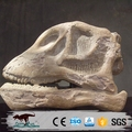 OA378319 Realistic Dinosaur Skeleton Skull Model Sculpture