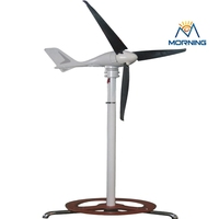 Hybrid solar hyacinth 300w home wind power generator