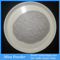 100mesh Powder Shape Mica,Muscovite Mica Mineral Buyers