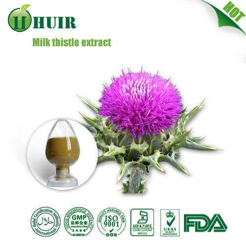 Best Quality Factory Supply Milk Thistle Extract Silymarin powder